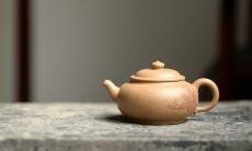 紫砂壶图片:颇有玩味 渐入佳境  全手乳丁 老段泥 - 美壶网