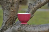 景德镇美杯紫砂壶 胭脂红杯  - 美壶网