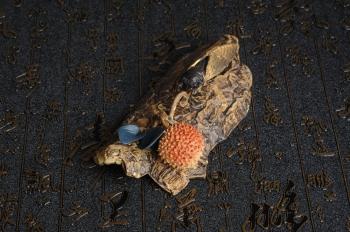 美壶定制紫砂壶 美宠特惠 荔枝熟了,知了声声叫着夏天  - 美壶网