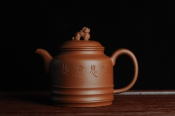 美壶定制紫砂壶 美壶年底特惠 精品立狮壶 请君细品 原矿降坡泥 - 美壶网