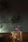江晓燕紫砂壶 梅桩  - 美壶网